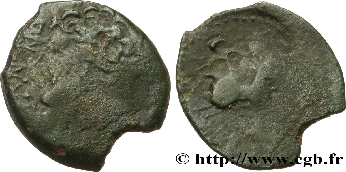 GALLIA BELGICA - MELDI (Area of Meaux) Bronze EPENOS VF