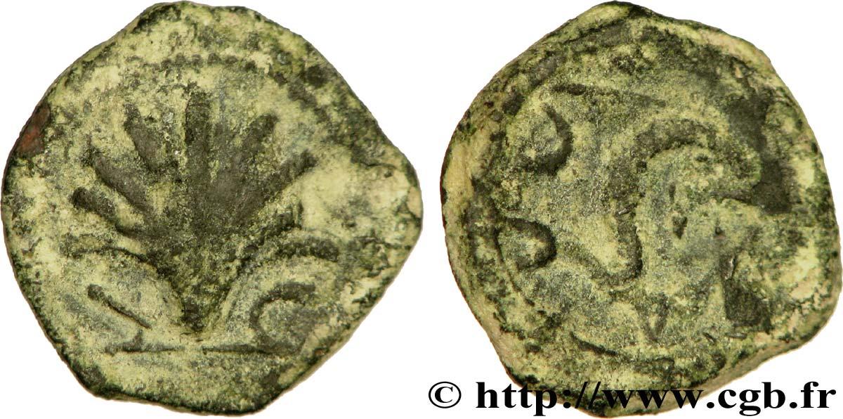 Quadrans ibérique Arse/Saguntum, province de Valence (env. IIe siècle av. J.-C.) ... Bga_281061