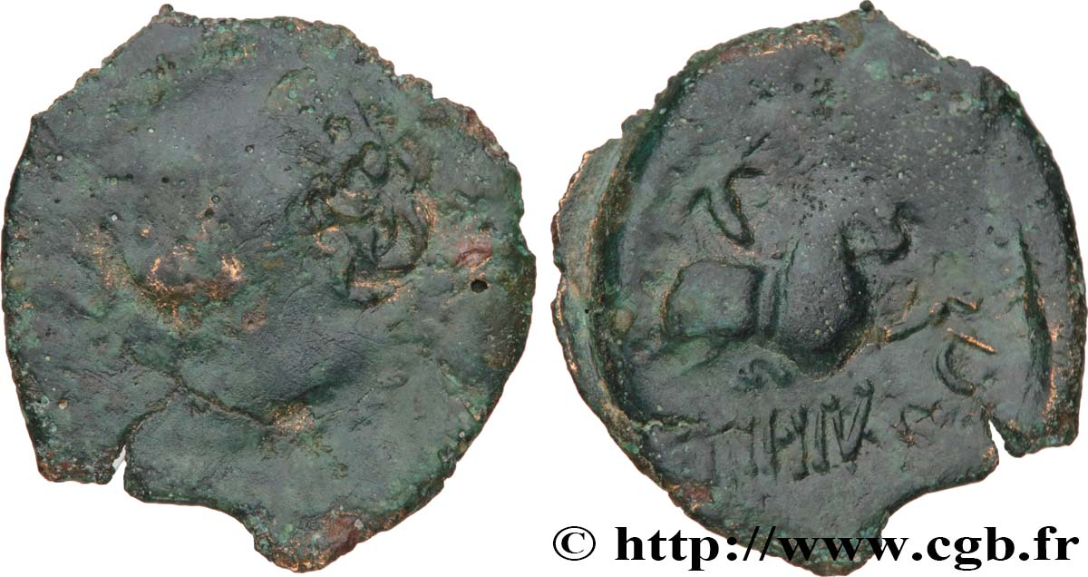 GALLIA BELGICA - MELDI (Area of Meaux) Bronze EPENOS VG/VF