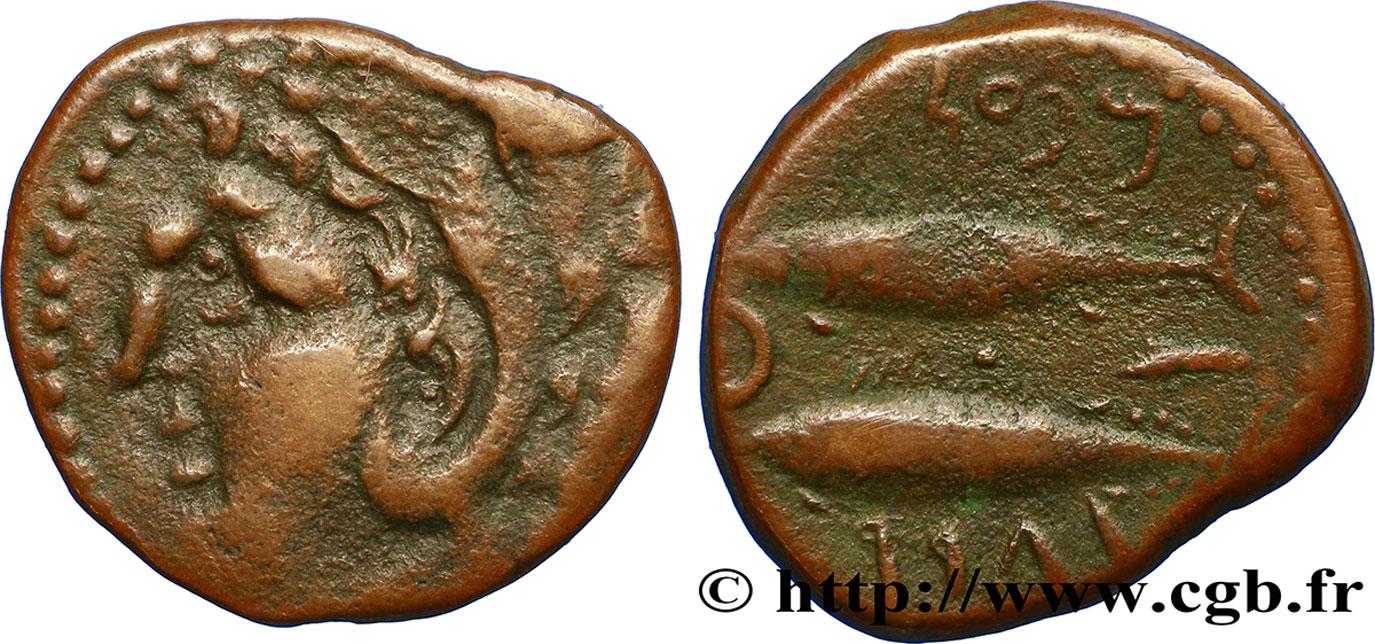 Bronze (½ unité) ibérique pour la ville de Gadès/Cadix ... Bgr_407220